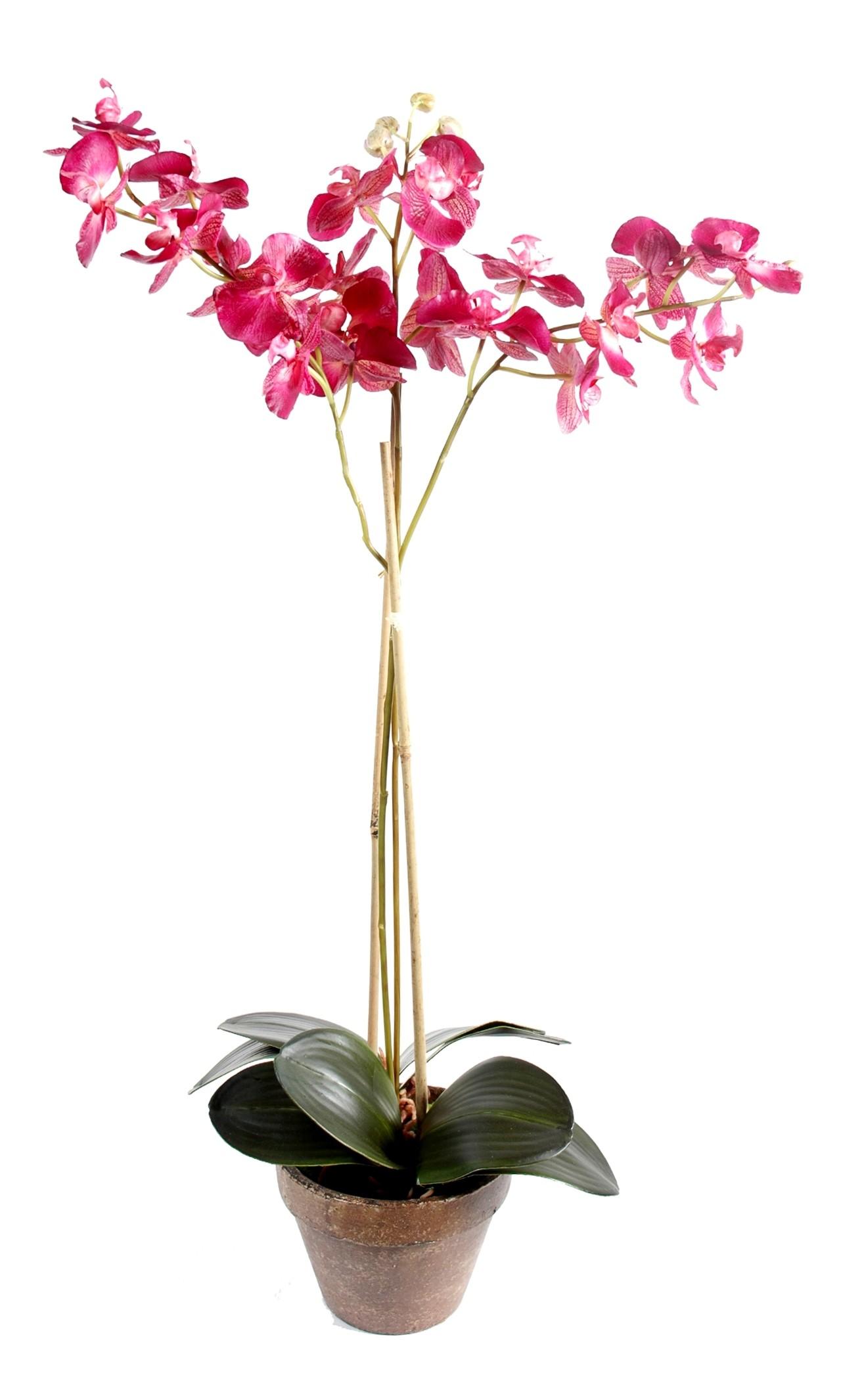 orchidee artificielle pas cher. Black Bedroom Furniture Sets. Home Design Ideas