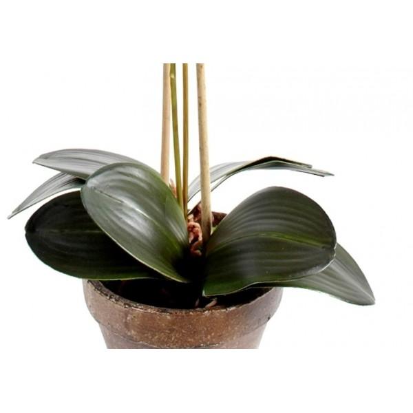 orchid e artificielle phala nopsis pot terre 85 28. Black Bedroom Furniture Sets. Home Design Ideas