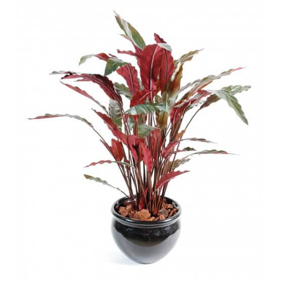 Plante Calathéa artificiel