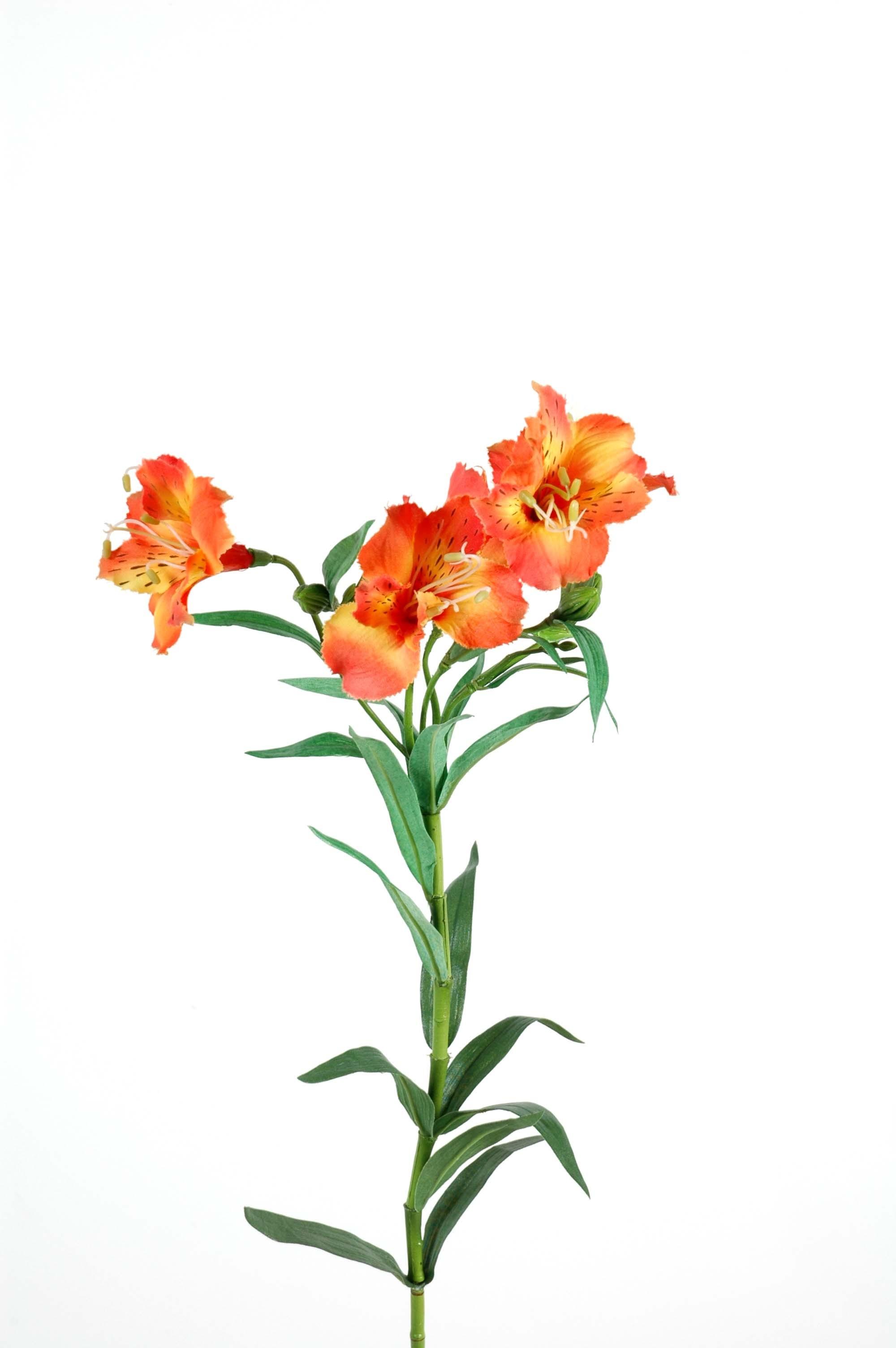 Alstrom ria fleurs artificielles par 12 fleurs for Fleures artificielles