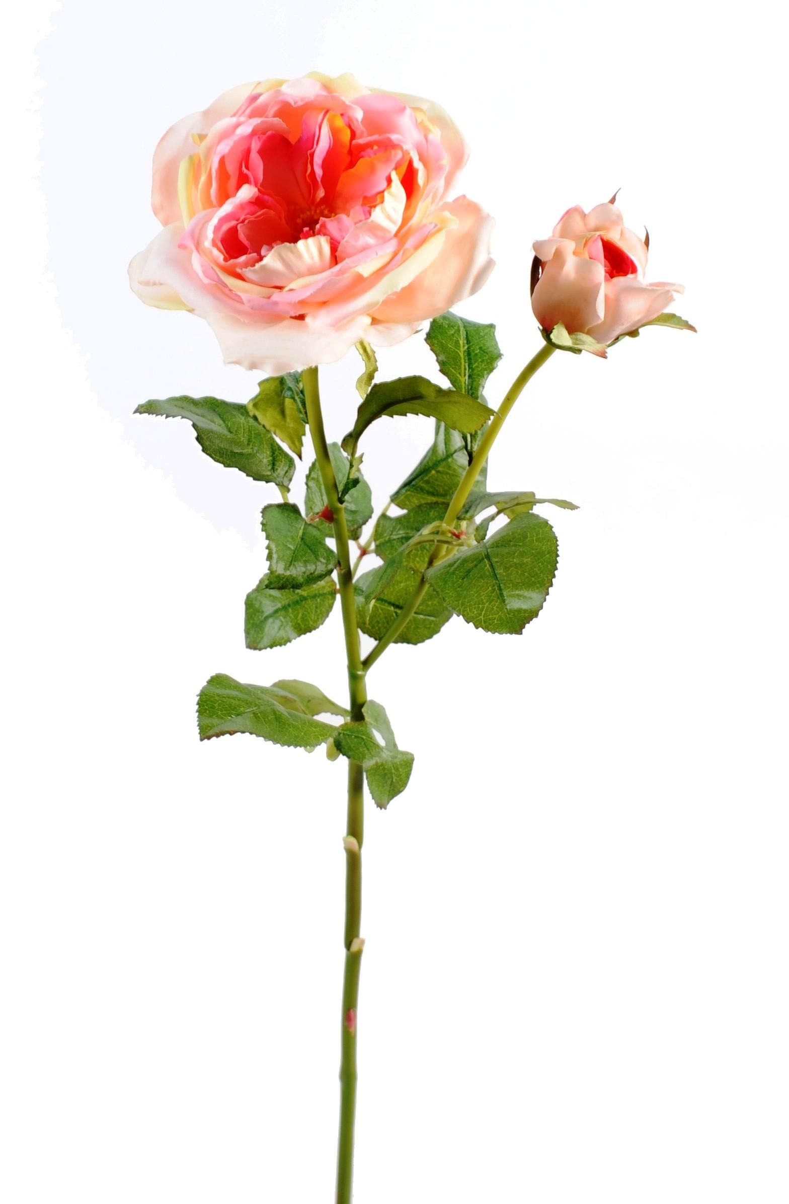 Rose damask par 3 fleurs artificielles 35 90 for Roses artificielles