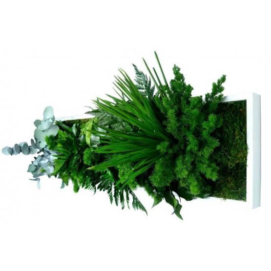 Tableau Végétal stabilisé NATURE panoramique