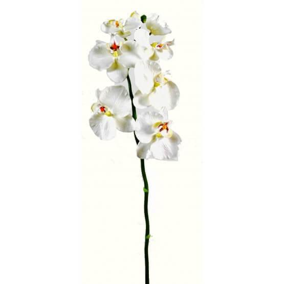 Phalaénopsis Artificielle Tige Médium