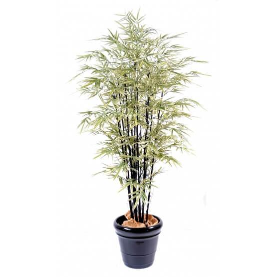 Bambou artificiel black Shiroshima (cannes noires) 3 tailles