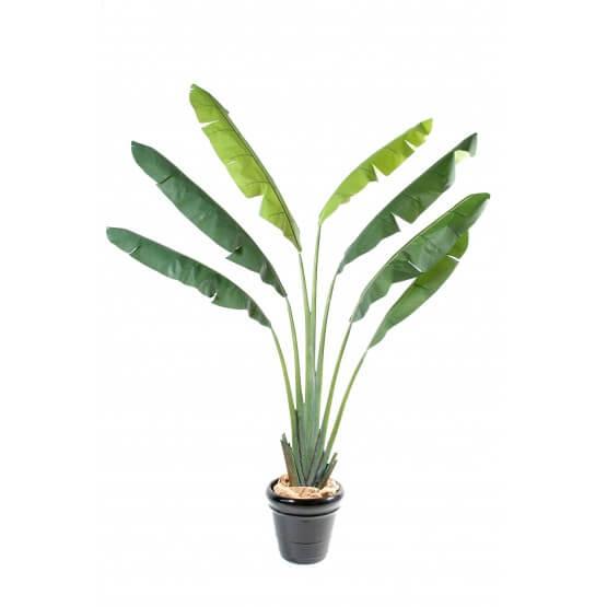 Arbre du voyageur 7 palmes artificiel - 250 cm