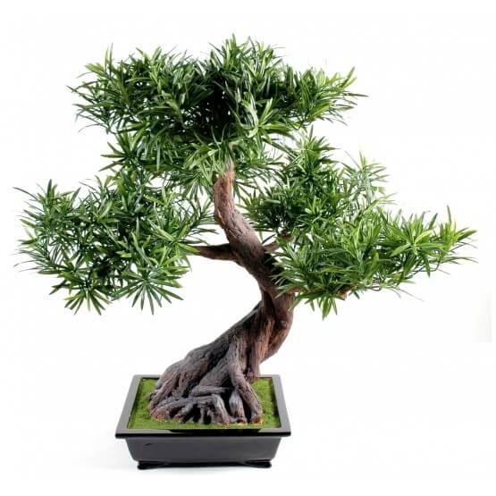 Bonsai podocarpus artificiel en coupe