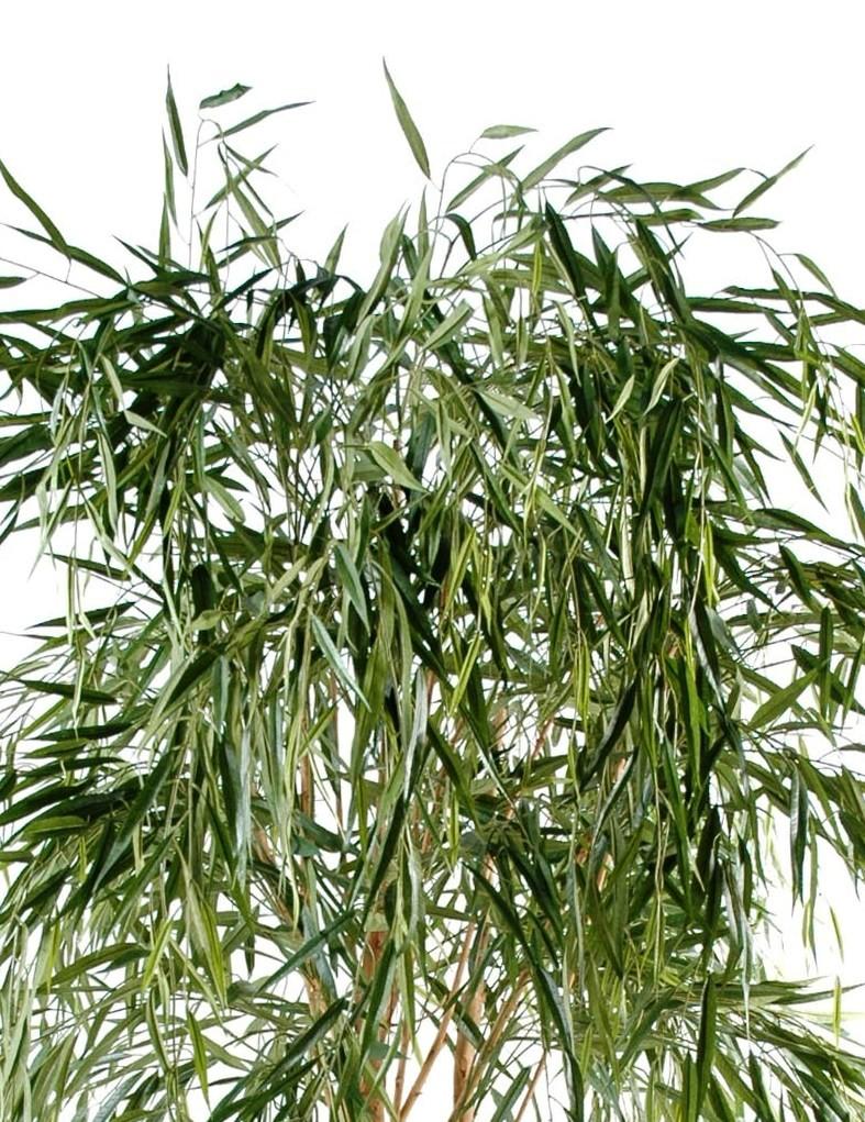 Saule pleureur artificiel 210 cm 229 00 - Plante artificielle exterieure ...