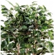 Ficus Exotica Buisson Artificiel