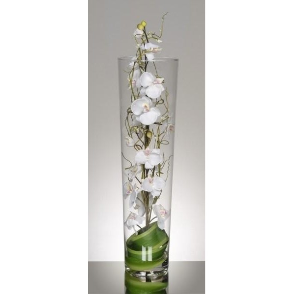 Vase cylindrique d 39 orchid es blanches 99 33 for Orchidee exterieur