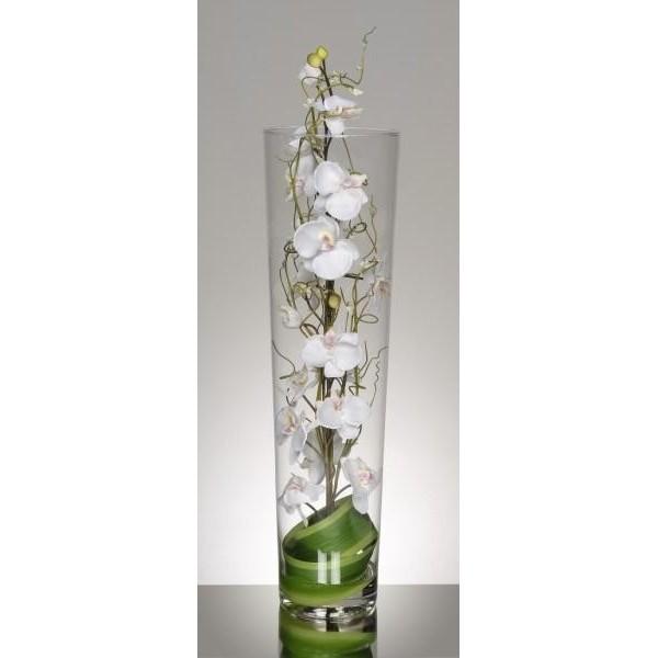 vase cylindrique d 39 orchid es blanches 99 33. Black Bedroom Furniture Sets. Home Design Ideas