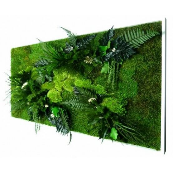 Tableau Végétal stabilisé RECTANGLE AG XL