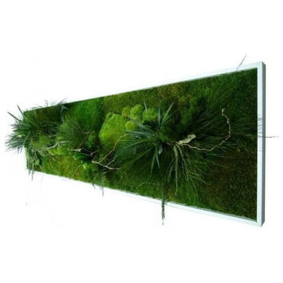 Tableau Végétal NATURE stabilisé panoramique  XL
