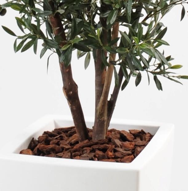 olivier artificiel new buisson en bac pure blanc 180 cm 600 00. Black Bedroom Furniture Sets. Home Design Ideas