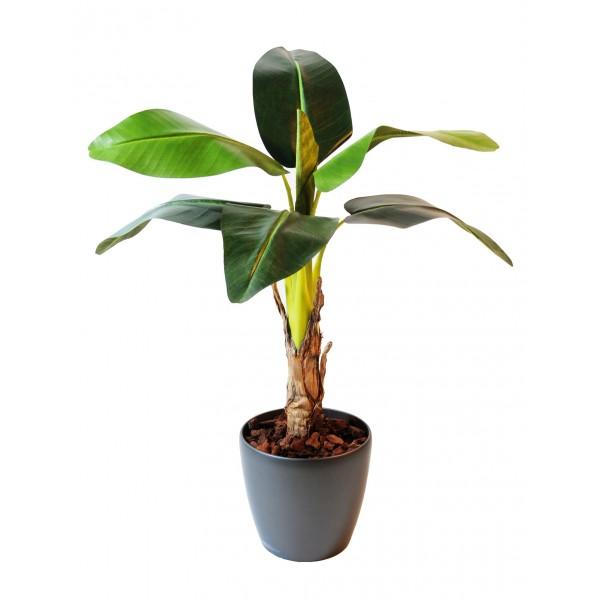Palmier artificiel et bananier artificiel exp di s sous 24 48h - Comment couper un palmier mort ...