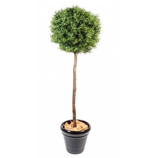 Eucalyptus artificiel plastique -  tronc bois