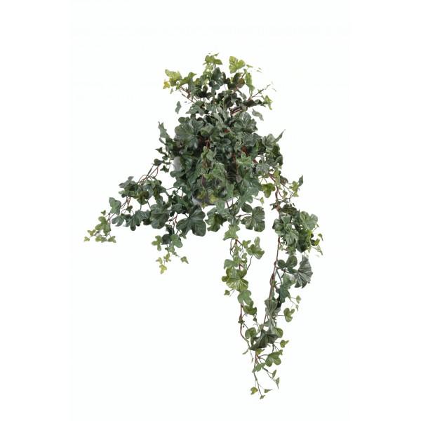 Chute de lierre pothos syngonium pour d corer vos for Lierre artificiel exterieur