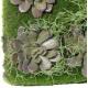 Mur végétal artificiel 50 x 50 cm