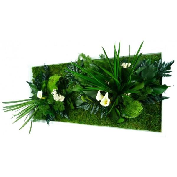 Tableau v g tal stabilis sans entretien plantes for Solde plante exterieur