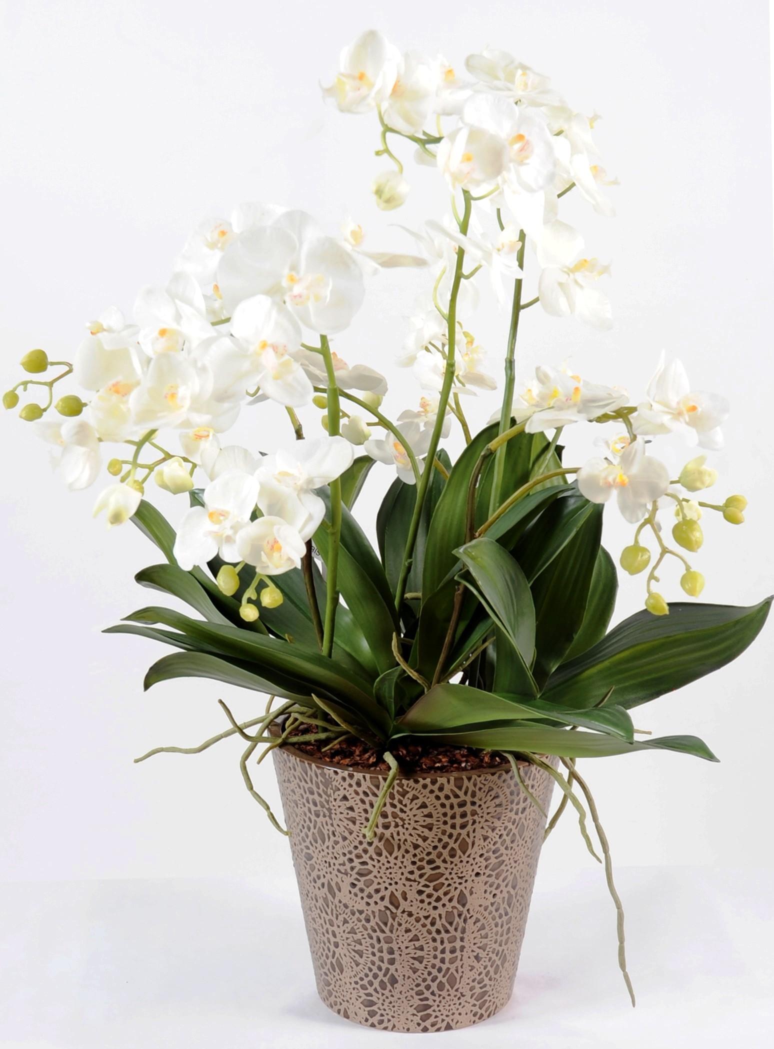 composition phalaenopsis artificielle 100 cm 189 63. Black Bedroom Furniture Sets. Home Design Ideas