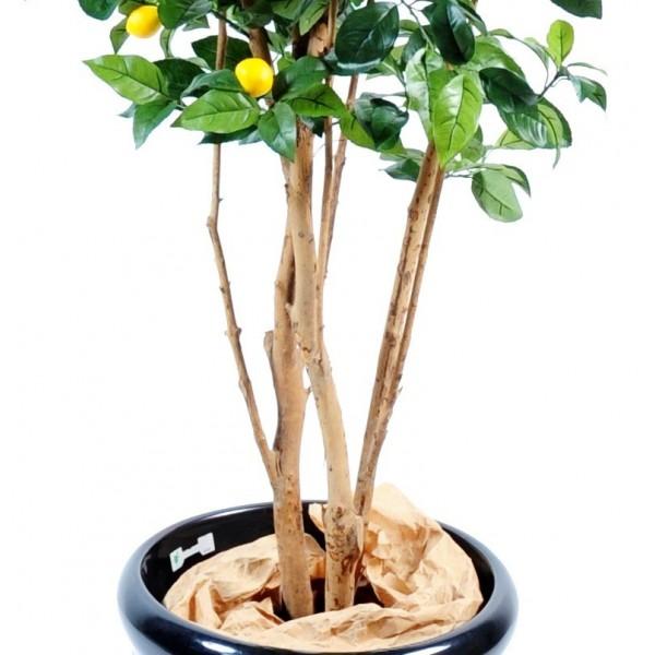 Citronnier new artificiel 150 cm 139 00 - Pot pour citronnier jardiland ...