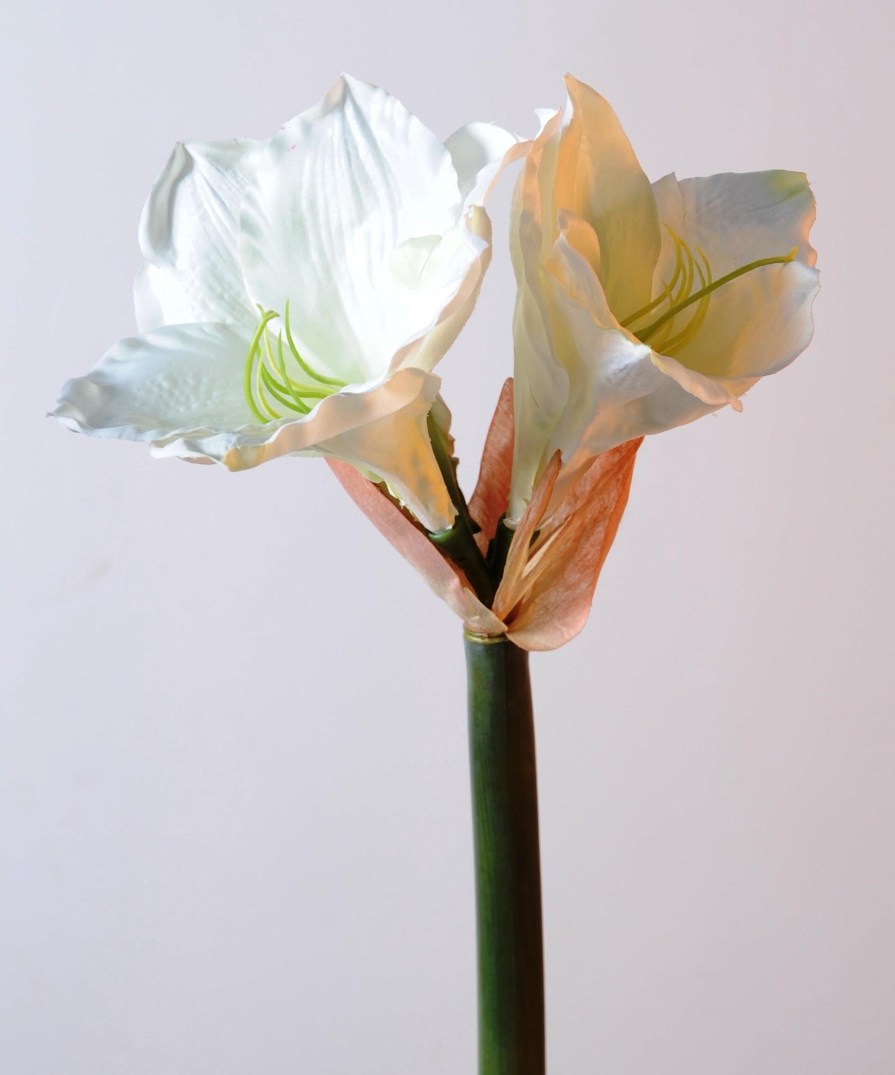 Amaryllis artificiel en tige 75 cm vendus par 6 69 23 for Amaryllis exterieur