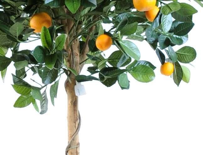 Oranger artificiel hauteur 125 cm 130 00 - Plante artificielle exterieure ...