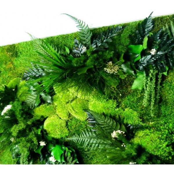 tableau v g tal stabilis nature rectangle xl 319 00. Black Bedroom Furniture Sets. Home Design Ideas