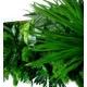 Tableau Végétal NATURE panoramique
