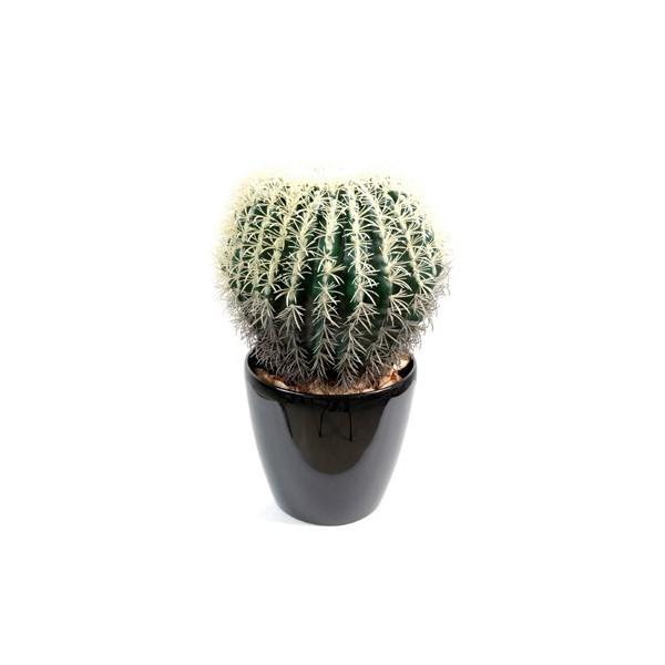 Cactus artificiel rond 139 00 for Cactus artificiel