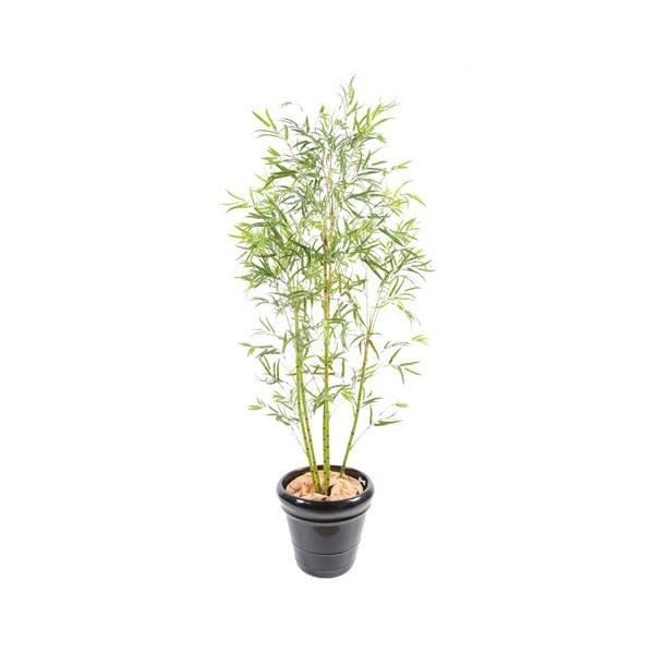 Bambou tree tronc plastique 195 cm 169 00 for Bambou en plastique