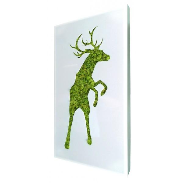 tableau v g tal stabilis cerf mousse lichen 98 00. Black Bedroom Furniture Sets. Home Design Ideas