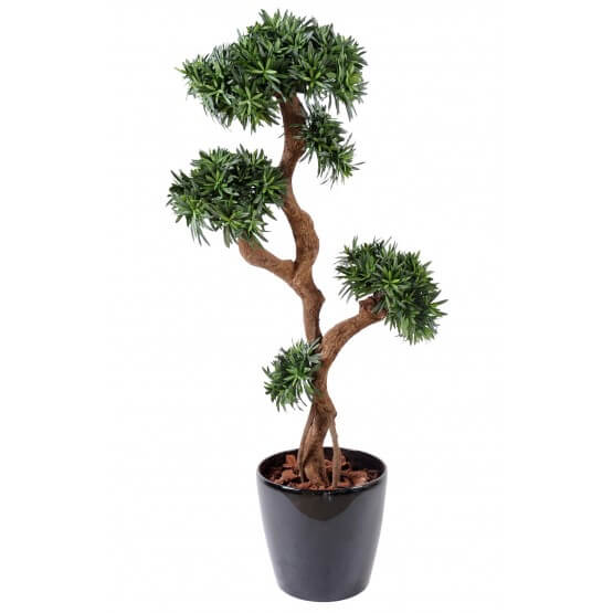 Podocarpus artificiel tree