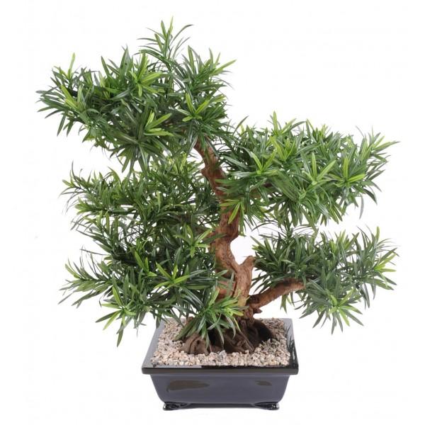 bonsa artificiel podocarpus en coupe 72 cm 420 00. Black Bedroom Furniture Sets. Home Design Ideas