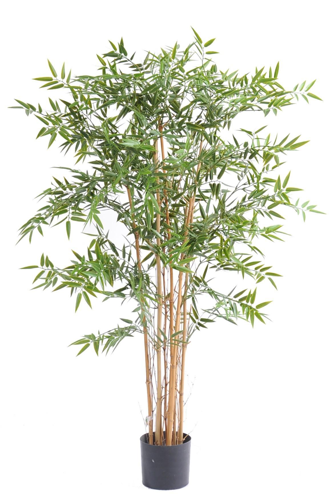 bambou artificiel japanese r sistant aux uv 5 hauteur au choix. Black Bedroom Furniture Sets. Home Design Ideas