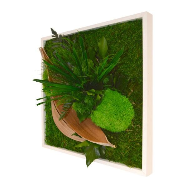Tableau v g tal stabilis sans entretien cadre plantes for Tableau avec bois flotte