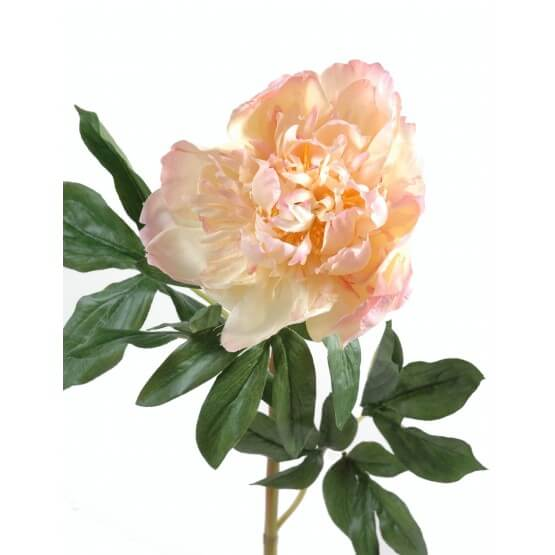 Pivoines artificielles - vendues par 6 tiges