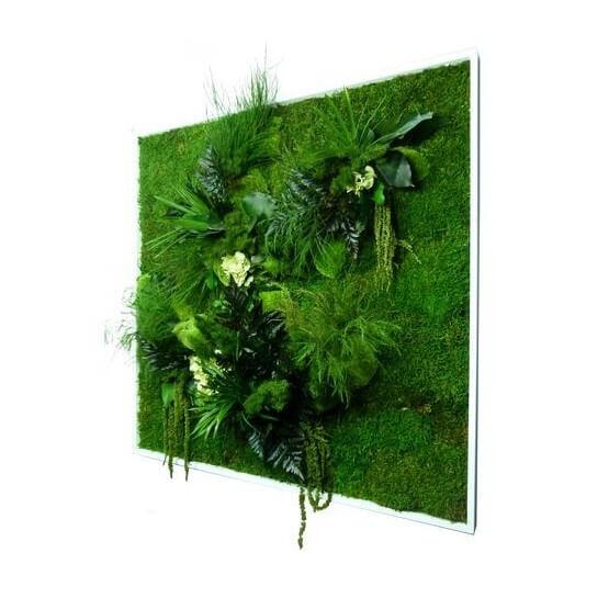 Tableau Végétal stabilisé NATURE carré XL