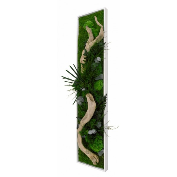 Tableau Végétal stabilisé NATURE panoramique L - Bois Flotté