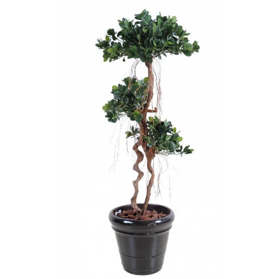 Ficus artificiel Panda New - 150 cm - Tronc Bois Naturel