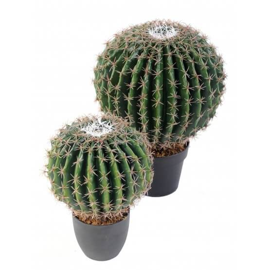 Cactus artificiel Echino rond