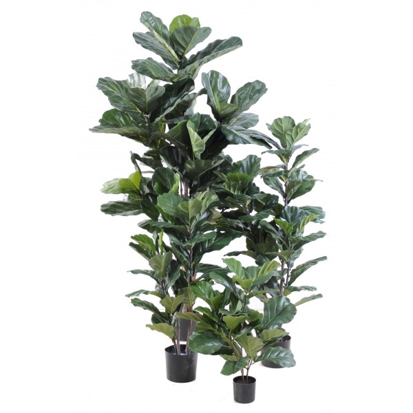 Ficus artificiel tronc bois naturel et feuilles en tergal for Ficus artificiel