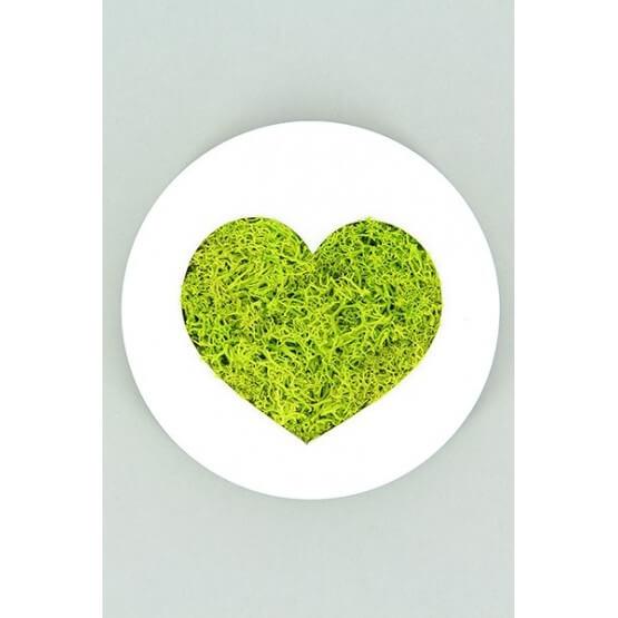 Tableau végétal stabilisé Micro Picto Smiley