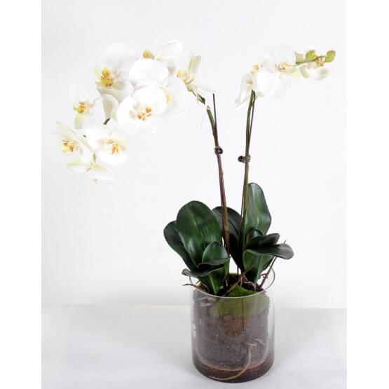 Orchidée Phalaenopsis artificielle - Vase rond
