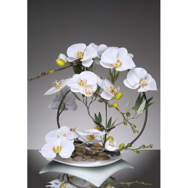 assiette blanche 3x6 orchid es 92 31. Black Bedroom Furniture Sets. Home Design Ideas