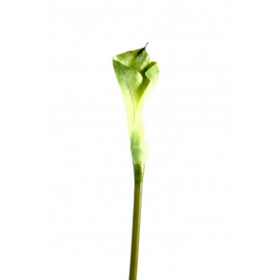 Arums - Par 6 - Fleurs Artificielles