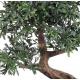 Bonsai artificiel Black Willow - 50 cm