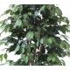 Ficus artificiel multitroncs