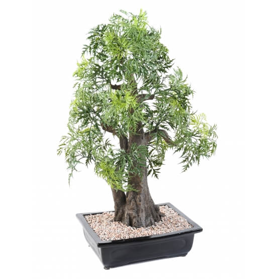 Bonsaï artificiel aralia - 80 cm