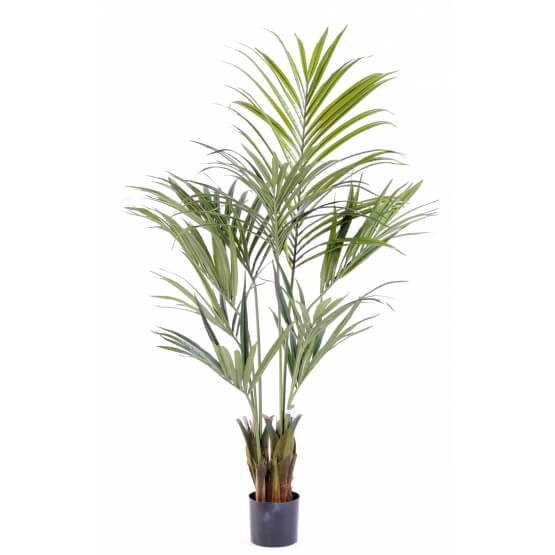 Kentia artificiel Palm