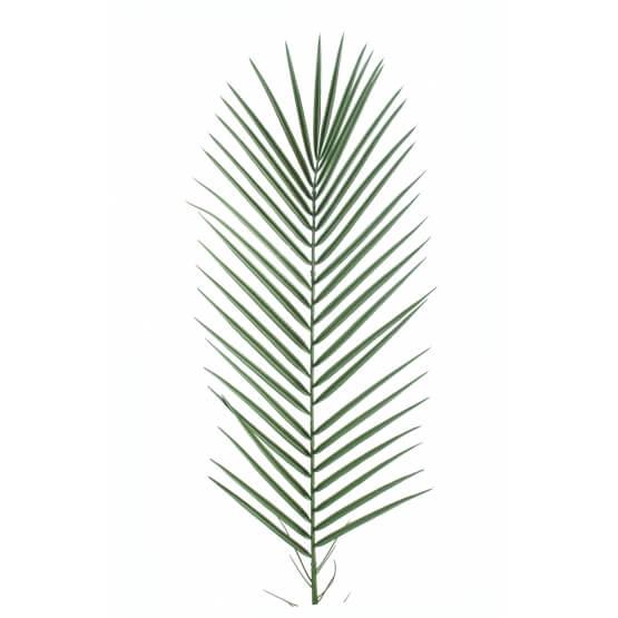Palmes Phoenix artificielles